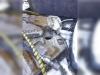 Гидроножницы CAT MP15